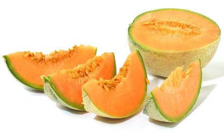 Cantaloupe-melon-001